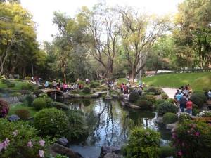 Jardin Japonés 300x225 Bosque Los Colomos