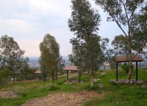 Cerro de la Reina