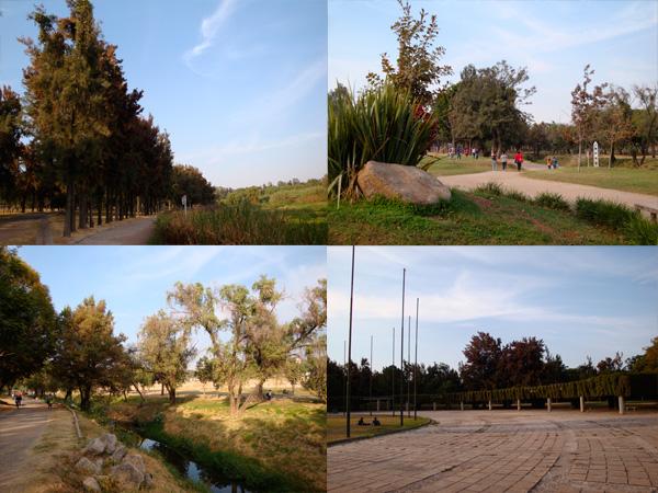 Parque Solidaridad