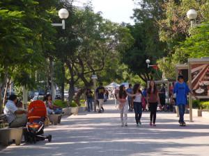 Chapultepec Guadalajara