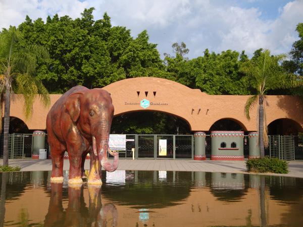 Escultura de Elefante Zoológico Guadalajara