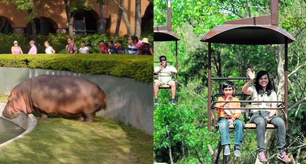 Zoologico-Guadalajara