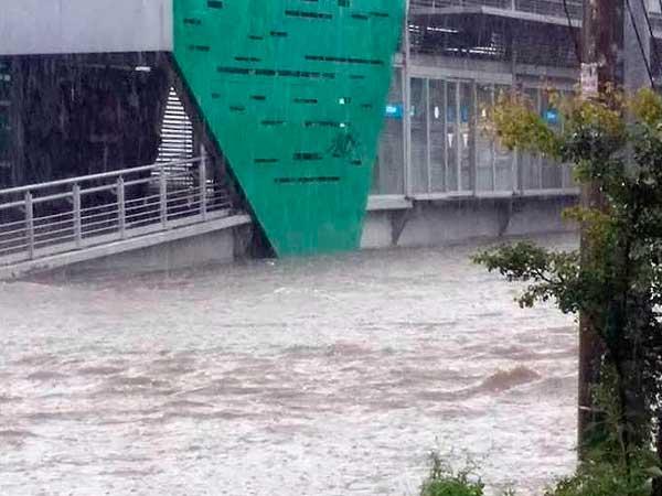 Macrobus-Inundado