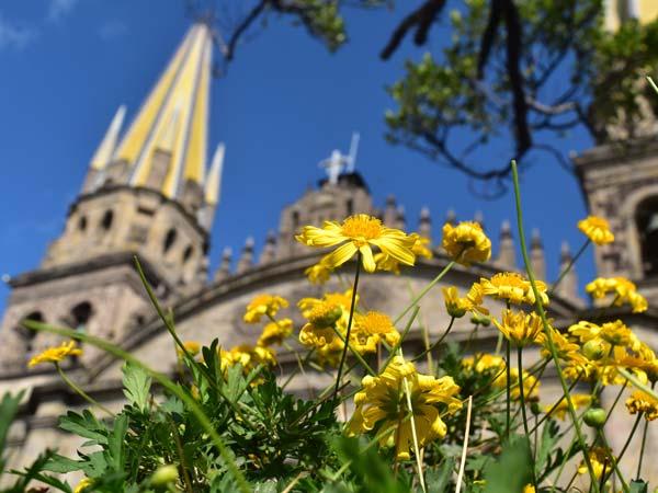 Guadalajara-Catedral