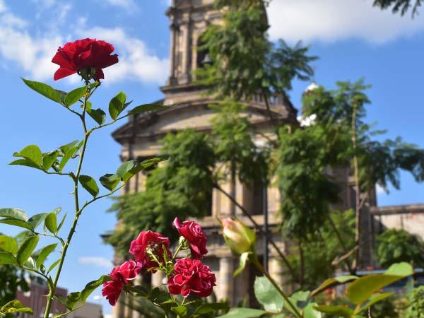 Guadalajara-Jardines