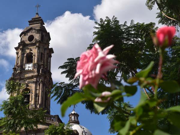 Guadalajara-Rosas