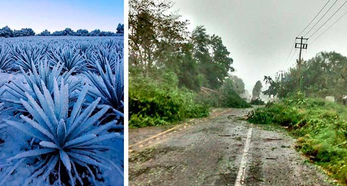 Cambio-Climatico-Jalisco