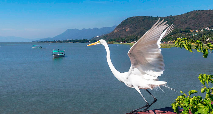 Lago de Chapala Clima