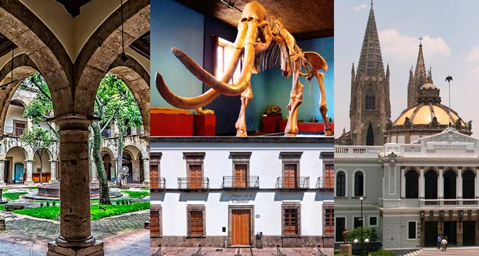 Museos de Guadalajara